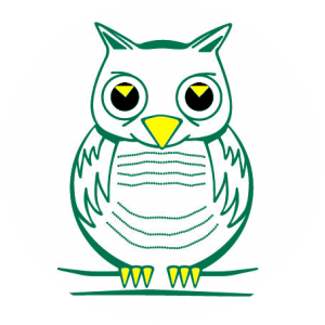 Goldsworth Primary School Owl
